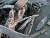 Gualala Beach driftwood